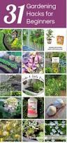gardening ideas archives sequin gardens
