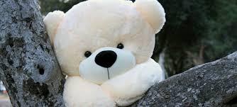 big teddy cozy cuddles 60 size plush teddy teddy