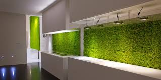 modern kitchen with a wall overed with grass beautify your home