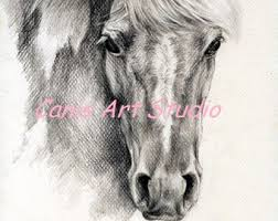 horse pencil drawing etsy