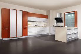 sample kitchen designs images pictures natural home design