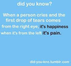 best 25 tears left eye ideas on facts best 25 tears left eye
