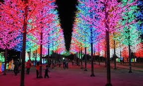 christmas lights in niagara falls ontario festival of lights niagara falls niagara college international
