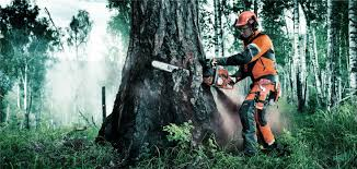 Safety Clothing Near Me Chainsaw Chaps Gloves Pants Helmets Glasses And Hearing Protection