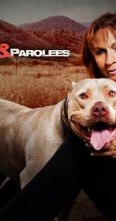 Seeking Season 1 Episode 3 Pitbull Pit Bulls And Parolees Tv Series 2009 Episodes Imdb