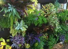 lawn u0026 garden vertical gardening and bing u0027s summer of doing plus