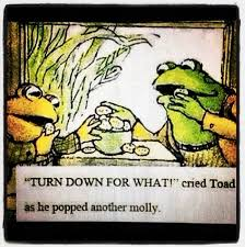 Turnt Up Meme - turnt up toad