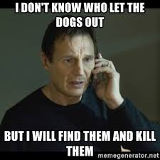 Who Let The Dogs Out Meme - i don t know who let the dogs out but i will find them and kill