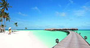 trip to a resort island and overwater bungalows in the maldives or
