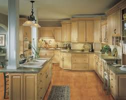 Kitchen With Light Cabinets 27 Best Light Cabinets Kitchen Ideas Images On Pinterest
