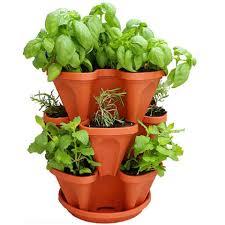 7 best indoor herb gardens in 2018 indoor gardens for growing herbs