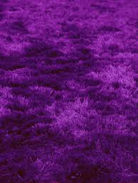 quirk bright violet shag rug from the shag rugs collection at