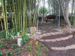 the secret bamboo garden in downtown braselton is actually a