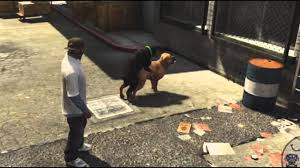 gta 5 boxer dog i heard he u0027s a trained boxer by snajath meme center