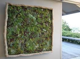 diy vertical garden lives and breathes gardening wonderhowto