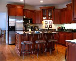 Kitchen Flooring Design Ideas by Kitchen Cool Bamboo Kitchen Flooring Home Design Great