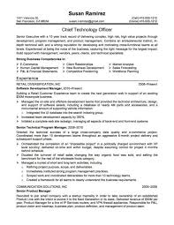 catchy resume titles catchy resume titles resumecharacterworld