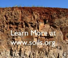what type of soil is good for a foundation for buildings or houses