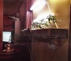 Grow Lights For Indoor Herb Garden - winter gardening is possible when you have an indoor garden