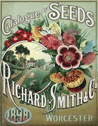 95 best vintage seed packets u0026 catalogs images on pinterest seed