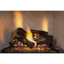 vented natural gas fireplace fireplace ideas