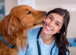 test ingresso veterinaria test veterinaria 2018 tutto sul test d ingresso studenti it