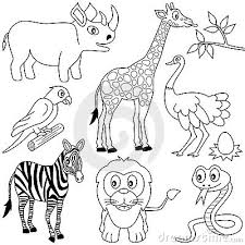 11 images of african grassland coloring pages grassland animals