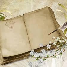 livre sur le mariage guide pour choisir votre livre d or de mariage astuces pour