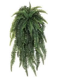 silk plants one 52 weeping boston fern hanging bush artificial silk plants