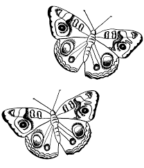 free butterfly coloring pages admiral butterfly