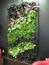 showroom design studio plantscaping and blooms