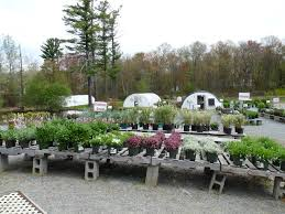 well known nursery u0026 garden center in salisbury ma for sale