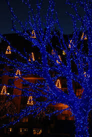 christmas outdoor lights at lowest prices 25 unique blue christmas lights ideas on pinterest blue fairy
