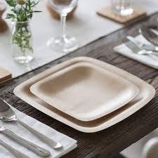 bamboo disposable plates bambu veneerware disposable bamboo plates
