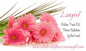 wholesale flowers online newonlineselection png