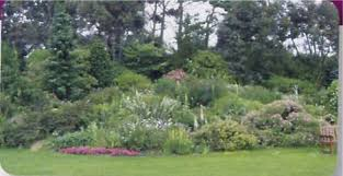 Barnhill Rock Garden Barnhill Rock Garden Broughty Ferry Home Page