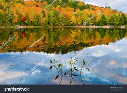 fall colors reflected lake canadas algonquin stock photo 18694576