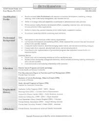 Resume Overview Example by Resume Profile Examples Graphic Designer Format Sample Product