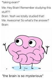 Brain Memes - taking exam me hey brain remember studying this stuff brain yeah
