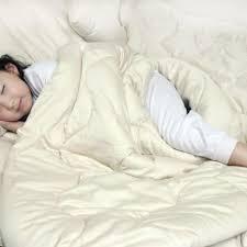 Wool Filled Comforter Organic Wool Comforter Best Quality
