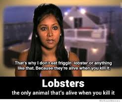 Snooki Meme - snooki on why she doesn t eat friggin lobster weknowmemes