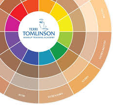 color wheel for makeup artists tomlinson flesh tone color wheel ready cosmetics