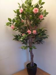 uk gardens artificial 4 camellia tree with pink flowers in a