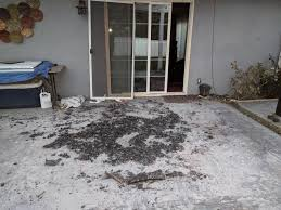 Patio Furniture Ventura Ca by My Patio Furniture Was Incinerated But My House Wasn U0027t Damaged At