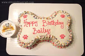 birthday cakes for dogs doggie birthday bailey turns 3 san diego pet photographer