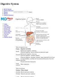 mcat study guide pdf digestive system mcat review digestion human digestive system