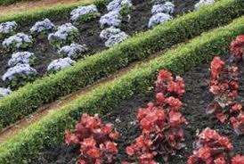 Tiered Garden Ideas Tiered Garden Ideas Home Guides Sf Gate