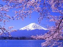 msyugioh123 images japan flower garden wallpaper and background