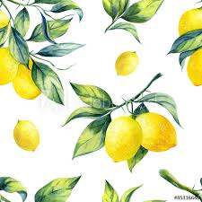 seamless lemon pattern a seamless lemon pattern on white background buy this stock