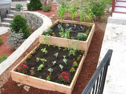 vegetable box garden foods for long life start your fall and